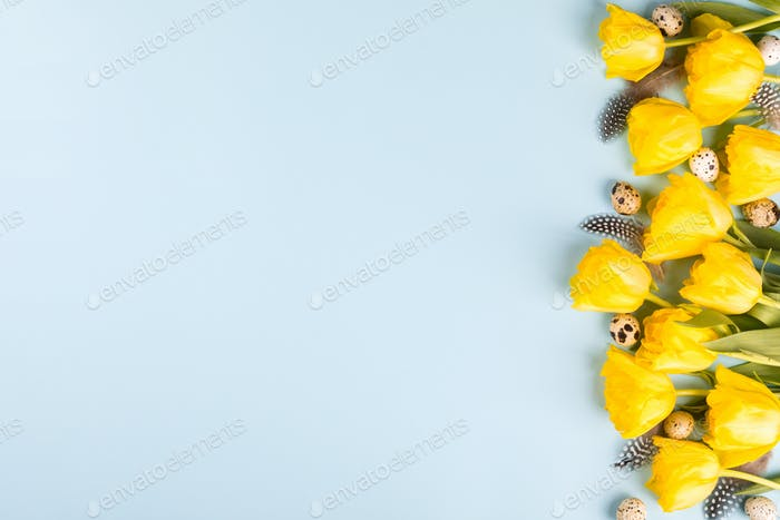 Ostern Zusammensetzung Wachteleier und gelbe Tulpen .Frohe Ostern