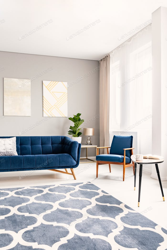 Elegant living room interior with a dark blue couch and a matchi