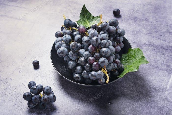 Sweet fresh black grape on the dark table