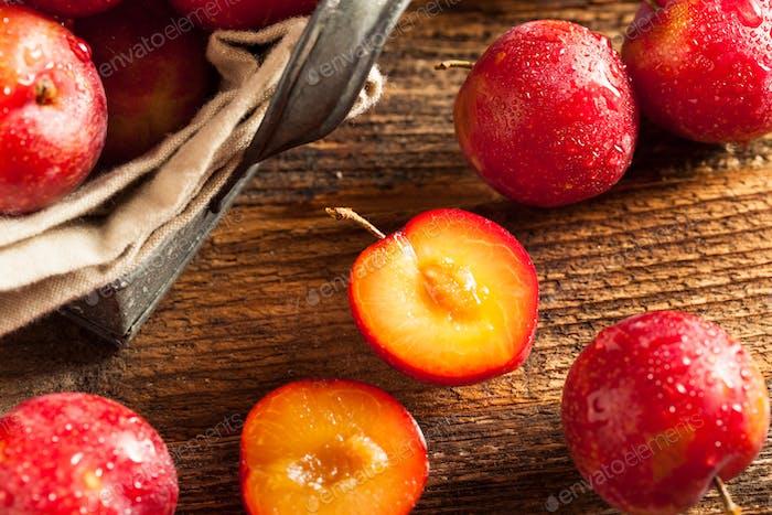 Fresh Raw Organic Cherry Plums