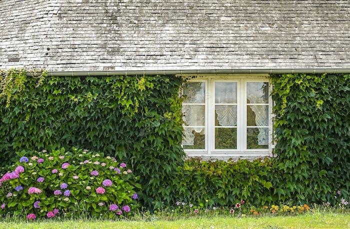 Landhaus in Mayenne