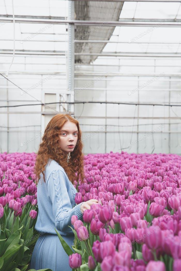 Standing between tulips