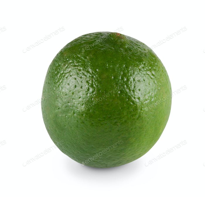 One fresh green lime citrus closeup isolated on white background