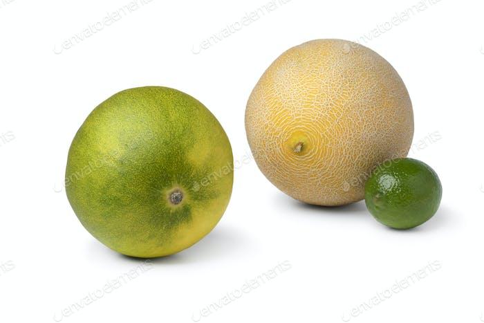 Frische ganze Limone mit einer Galia-Melone und Limette im Hintergrund