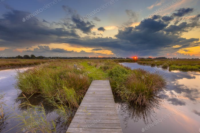 Wetland Footbridge with setting sun