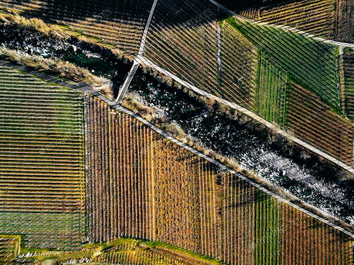 Aerial view of vineyard fields during winter in Italy.