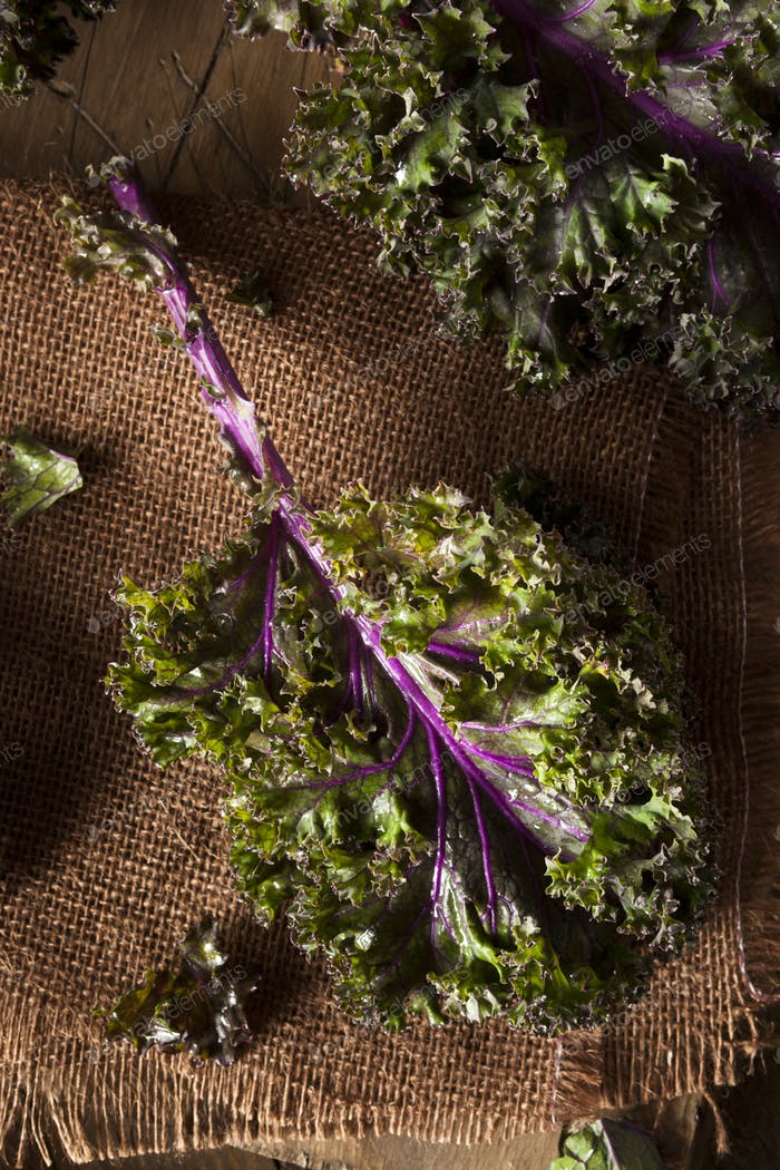 Organic Raw Red Kale