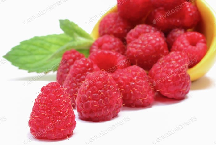 Fresh healthy raspberries as delicious dessert containing minerals