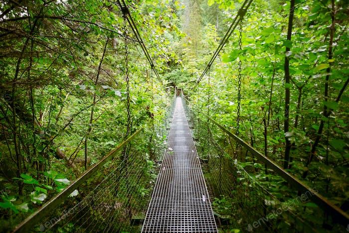 Suspension metal bridge. The Tatras, Slovakia.