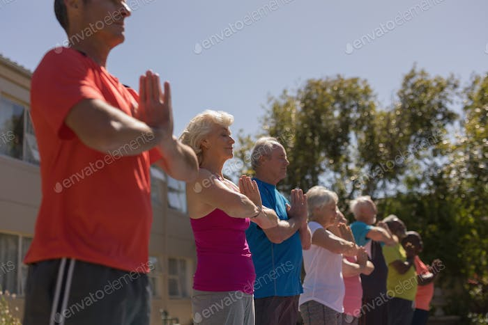 Low angle view of group of active senior people standing performing yoga in the park