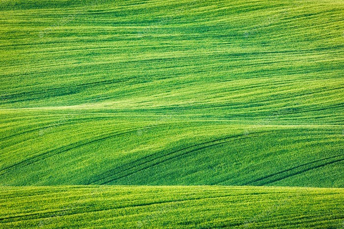 Abstract pattern texture of rolling fields