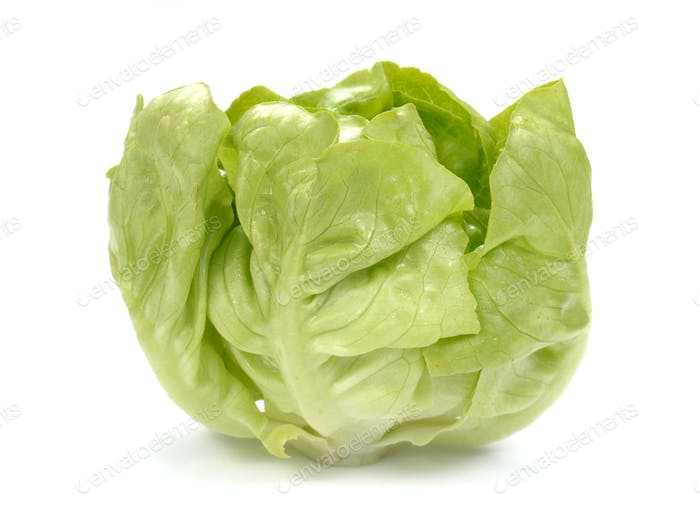 Frischer Salatsalat, Frischer Gemüsesalat auf weißem Hintergrund.