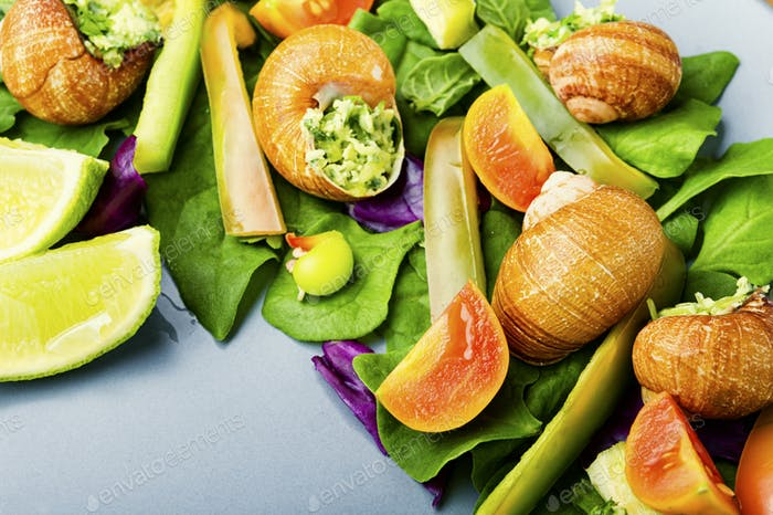 Salad with vegetables and snails