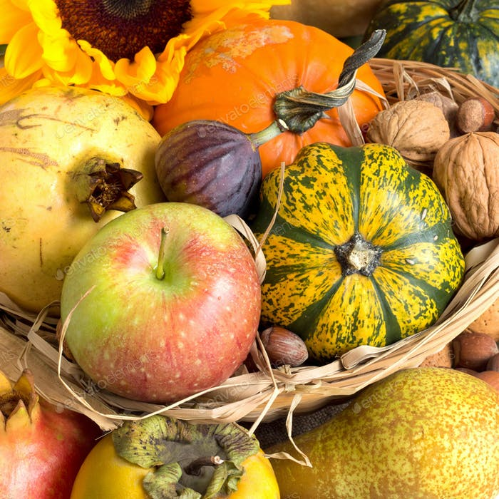 Autumn background with fruits, pumpkins, sunflower and nuts