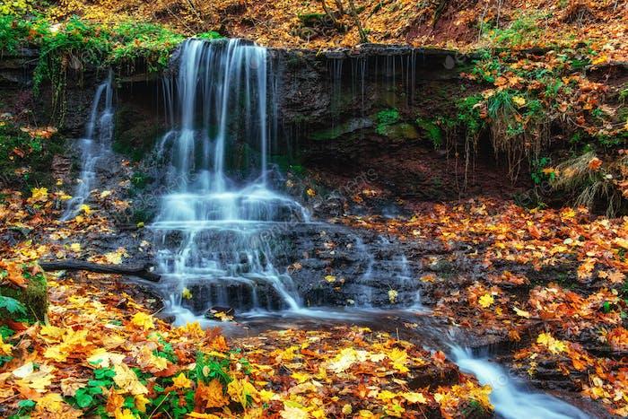 Waterfall in autumn sunlight Beauty world Carpathians. Ukraine. Europe