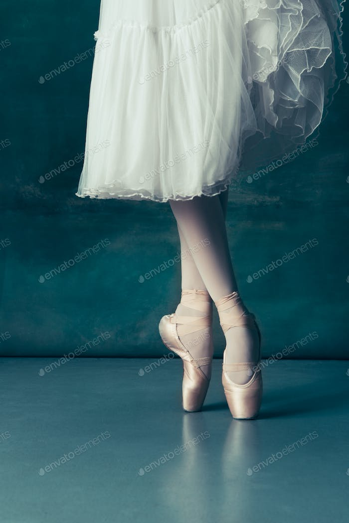 Close-up ballerinas legs in pointes on the gray wooden floor