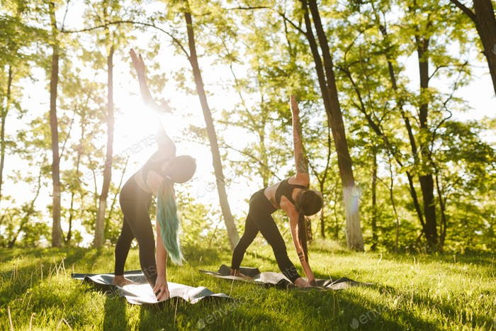 Photo of young ladies training yoga poses together outdoors. Two women practicing yoga