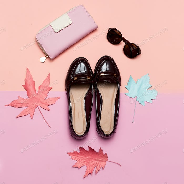 Fashionable Vintage Shoes for Lady and Accessories Clutch and Gl