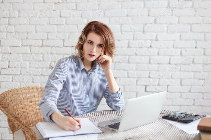 Geschäftsfrau spricht am Telefon und Schreiben im Tagebuch.