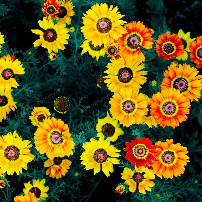 Gelb Floral Hintergrund. Grün. minimal
