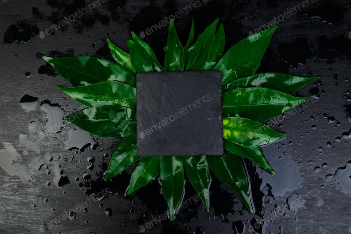 Creative layout made of leaves with black  slate plate card note.