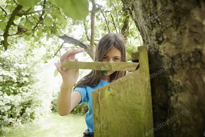 A young girl, a birdwatcher, checking a nesting box on a tree trunk.