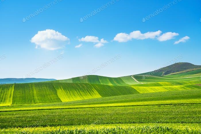 Apulien Landschaft Blick sanften Hügel Landschaft. Poggiorsini, Murge Italien
