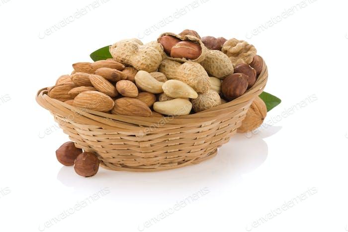Nut food garl