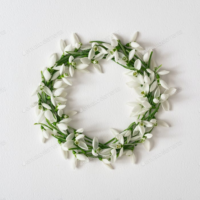 Creative layout made with snowdrop flowers on bright background. Minimal nature love wreath.
