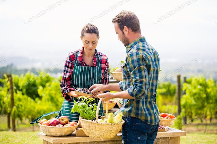 Man buying organic vegetables from woman at farm