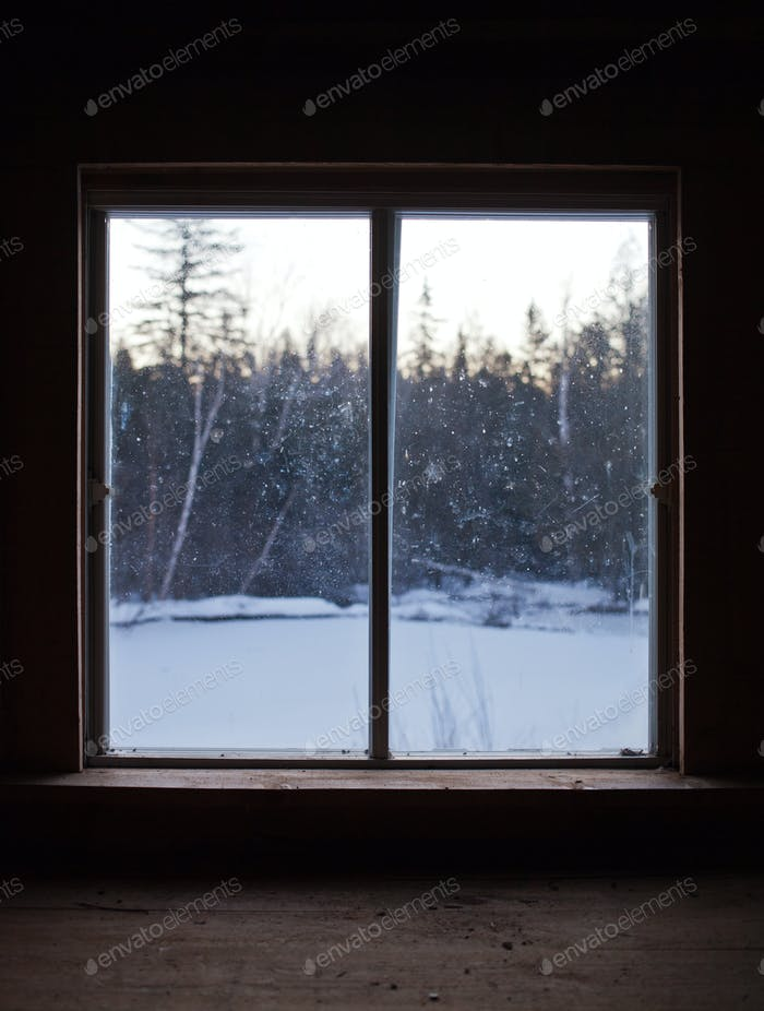 Calm Scene of Winter Nature Through the Window Pane