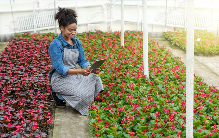 Quality control in greenhouse. Smiling girl farmer looking at tablet in greenhouse