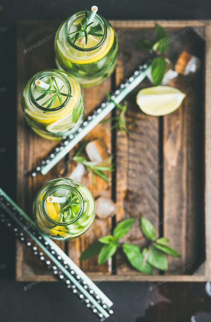 Citrus and herbs infused sassi water in tray, copy space