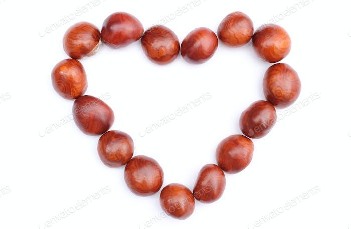 Heart of chestnut on white background