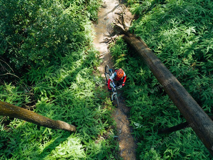 Aerial view of cross country biking in summer rainforest