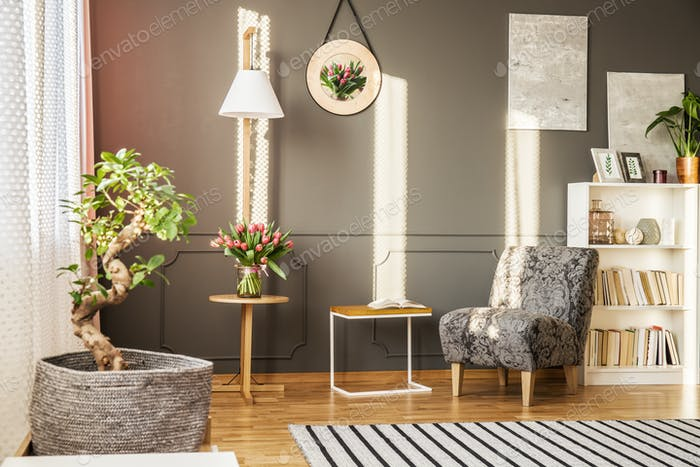 Bonsai tree and patterned armchair