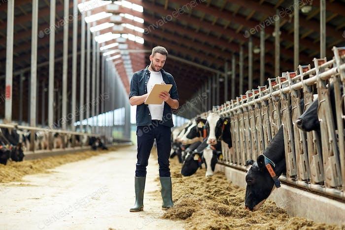 Bauer mit Zwischenablage und Kühe im Kuhstall auf dem Bauernhof