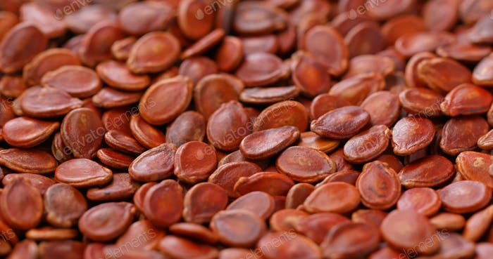 Chinese new year red melon seed