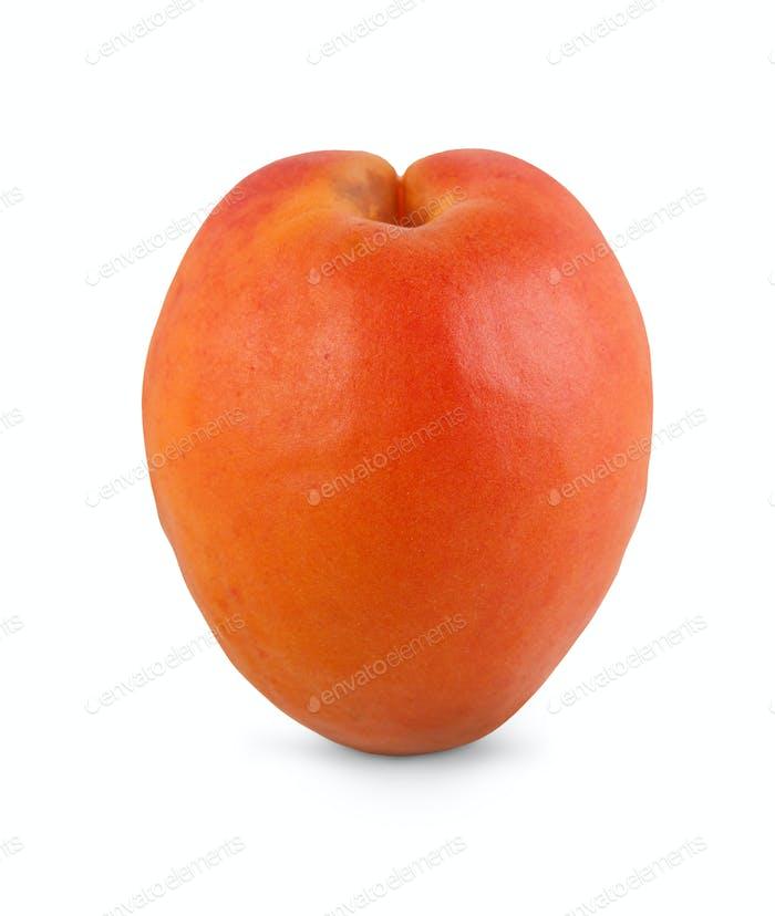 One ripe fresh apricot isolated on white background