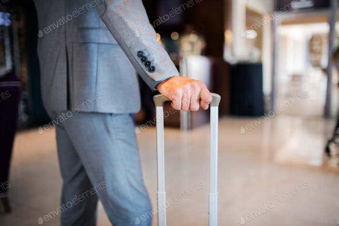 Businessman with suitcase in a hotel entrance hall.
