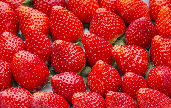 Box of strawberries, harvest collection.