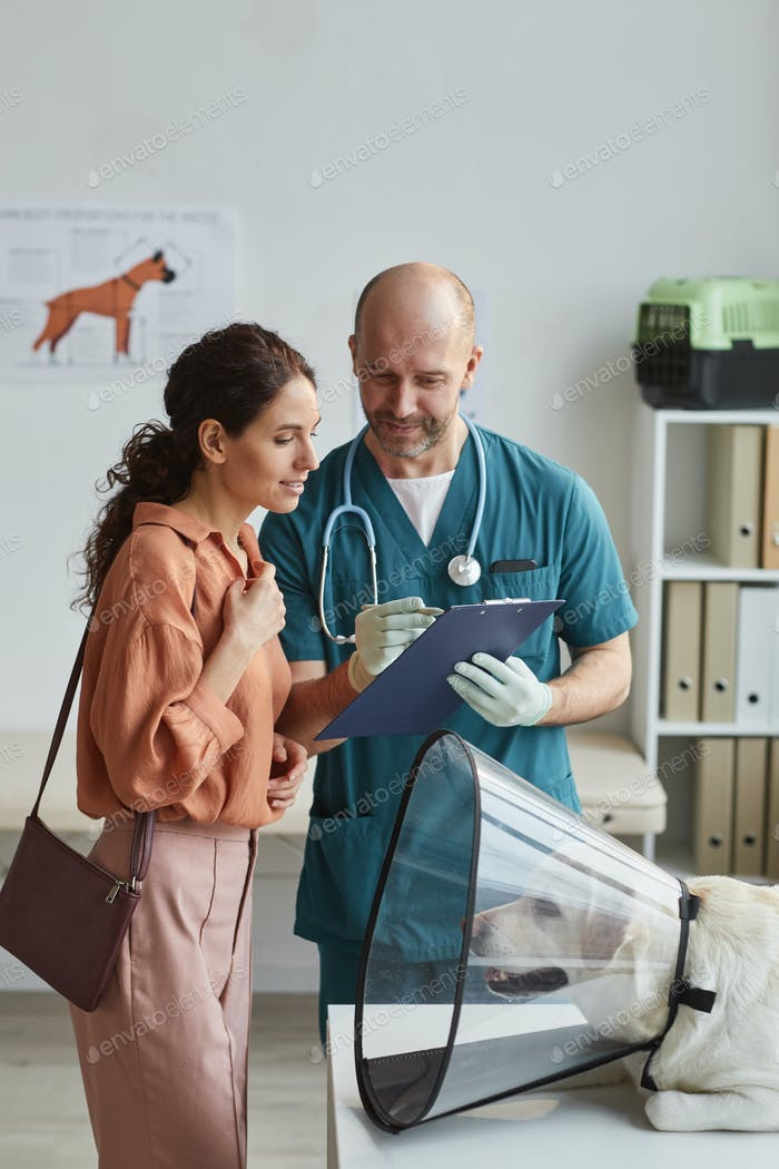 Veterinarian Consulting Young Woman in Vet Clinic