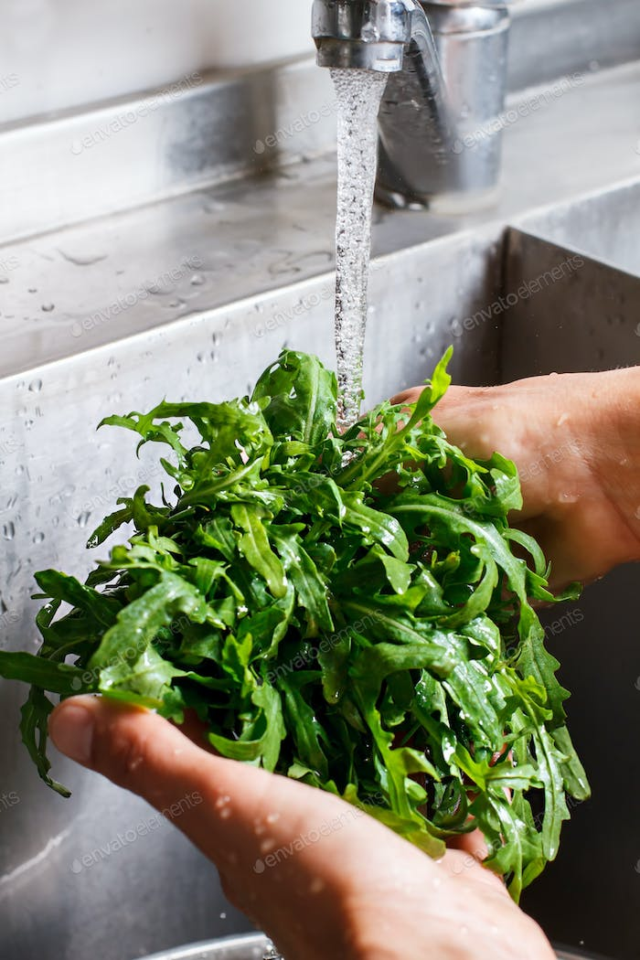 Male hands washing roquette.