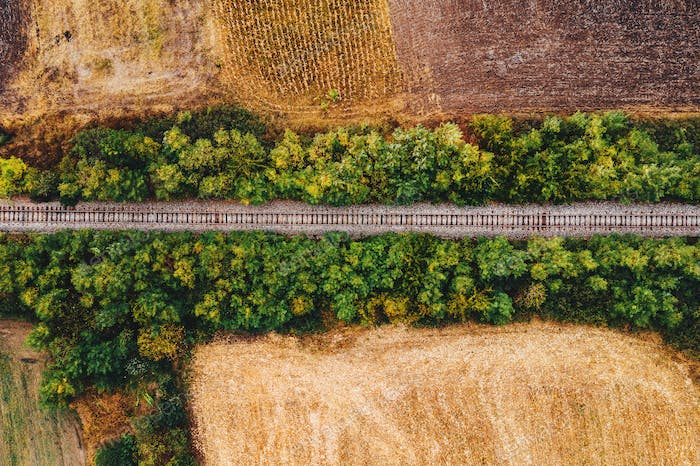 Old railroad track through countryside in autumn, aerial view