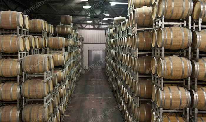 47556,Aging Wine In Wooden Casks