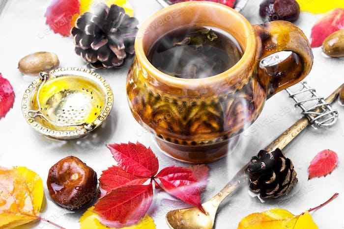 cup of warming autumn tea