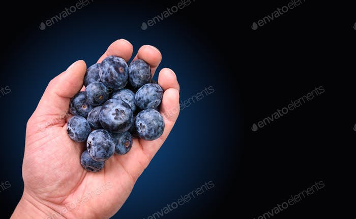 Handful of blueberries on black background. Copy space antioxidant concept. Hand full of berries
