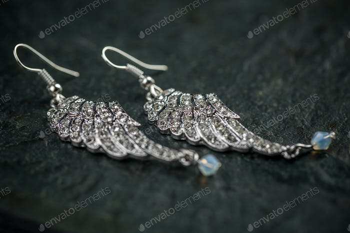 Image of a pair of earrings