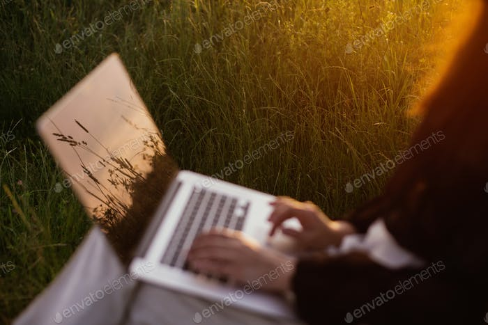 Herbs and wildflowers in sunset light reflecting on laptop screen