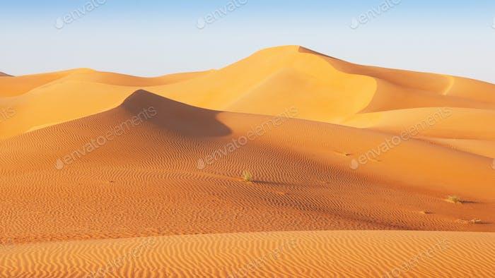 Dune Landscape in the Empty Quarter Desert